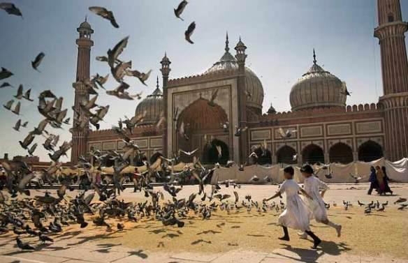 Freitagsmoschee Delhi Indien Kinder jagen Tauben